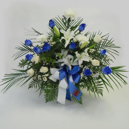 Bleue-Blanche