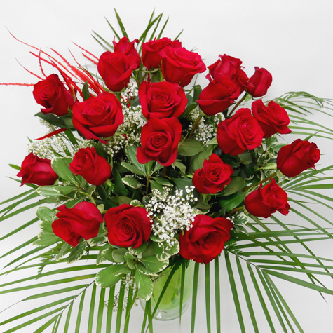 24 Roses Rouges